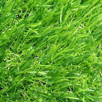 thảm cỏ trường mầm non