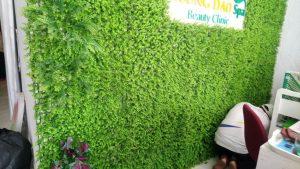 thi công dán tường cỏ nhân tạo
