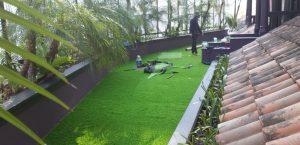 ngành cỏ nhân tạo phục hồi