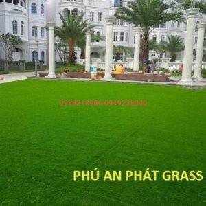 thảm cỏ xanh trải nhà