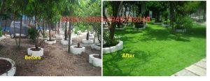 cỏ sân vườn nhân tạo