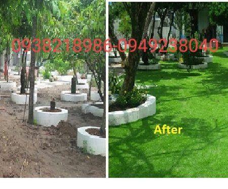 cỏ nhân tạo lót sàn bình dương