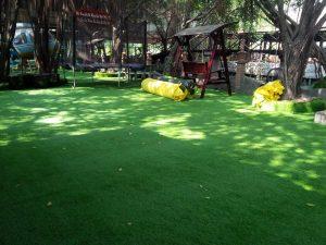 cỏ nhân tạo trường mầm non