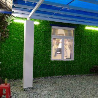 thi công cỏ ốp tường tân bình