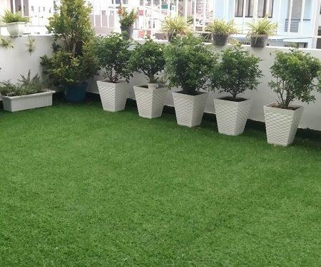 thảm cỏ lót sàn
