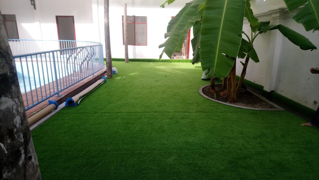 phân phối cỏ nhân tạo bình dương