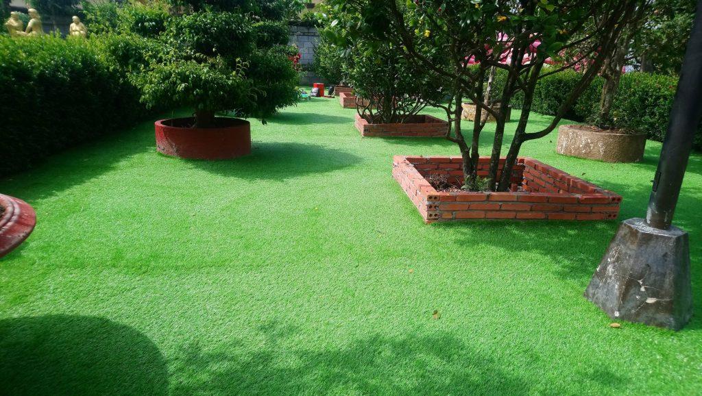 cỏ nhân tạo bình thuận