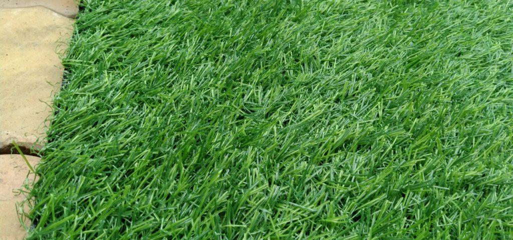 cỏ nhân tạo an giang